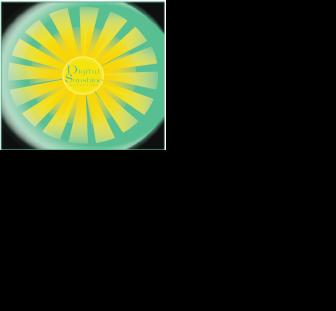 Digital Sunshine Solutions